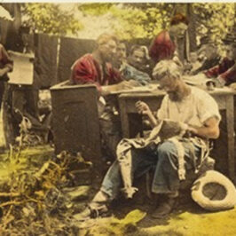 In Their Letters – In Their Words – Illinois Civil War Soldiers Write Home, by Mark Flotow